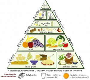 the_food_pyramid 1